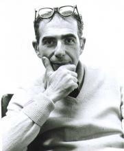 Raoul Pleskow